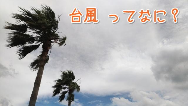 台風ってなに